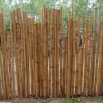 Bambuszaun einbetoniert