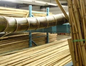 Das BambusWerk